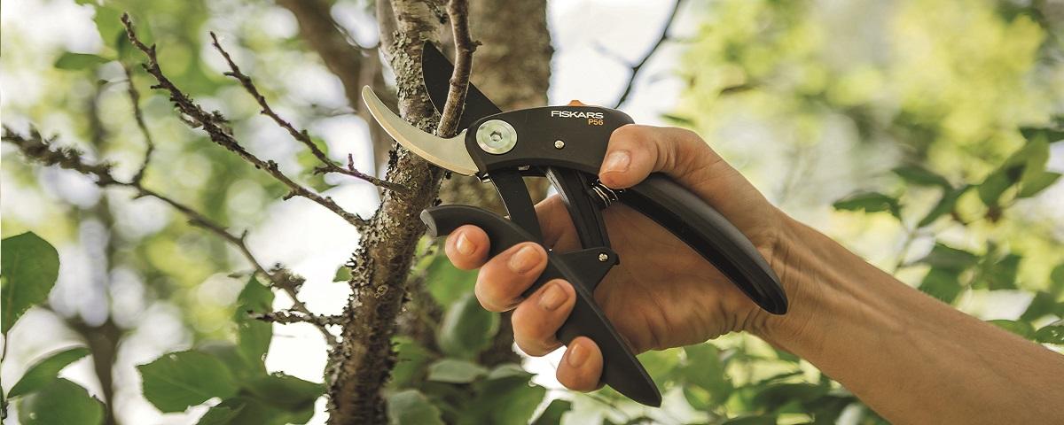 schwarz Heckenschere Fiskars Buchsbaumschere S50