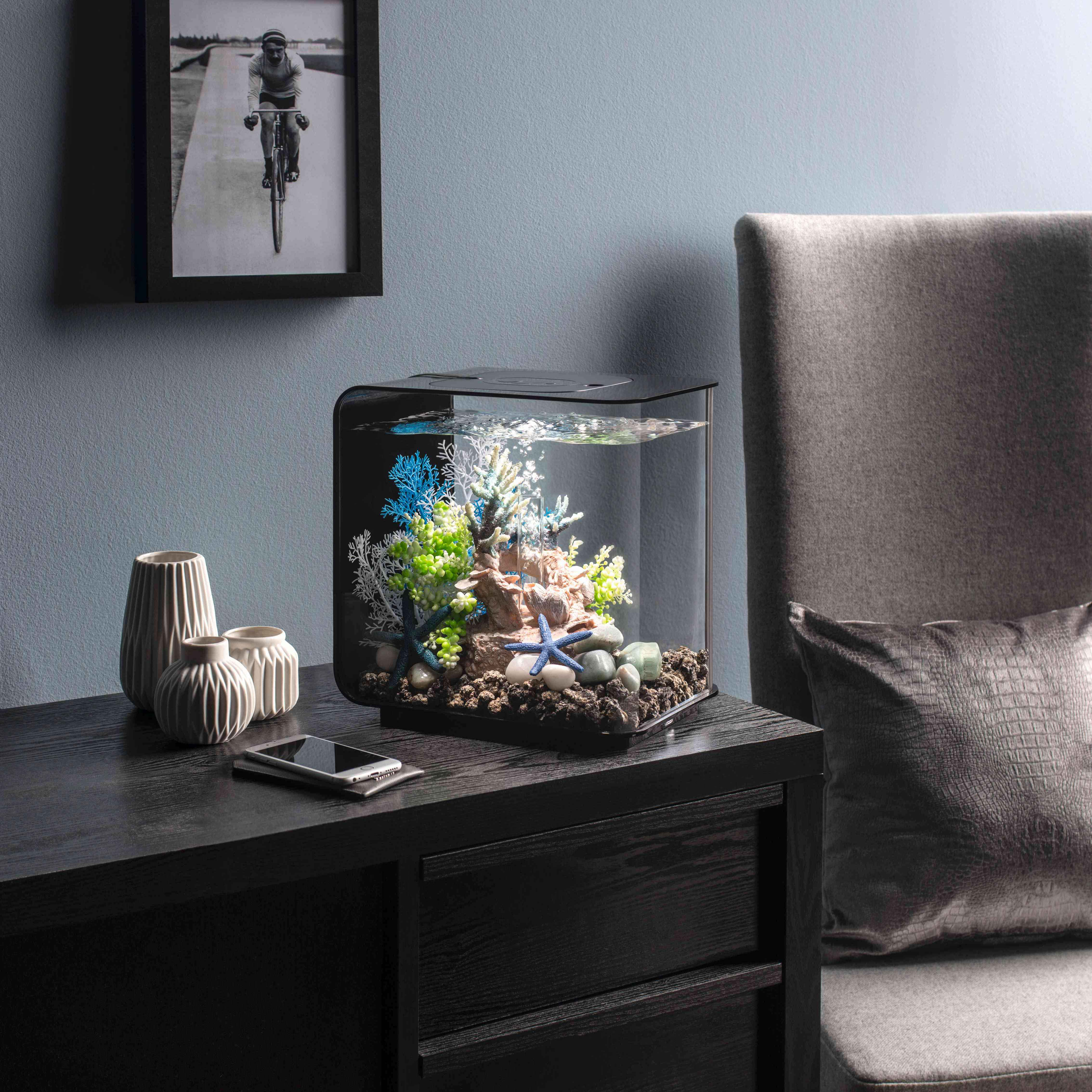 oase biorb aquarien startseite. Black Bedroom Furniture Sets. Home Design Ideas
