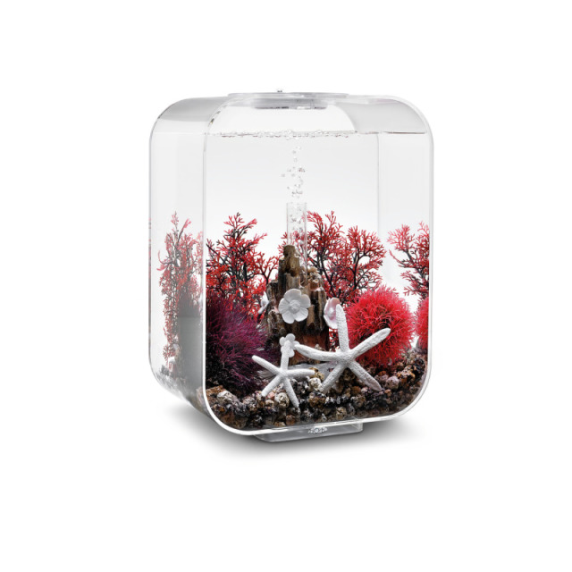 biOrb Easy Décor Kit - 15L Rot