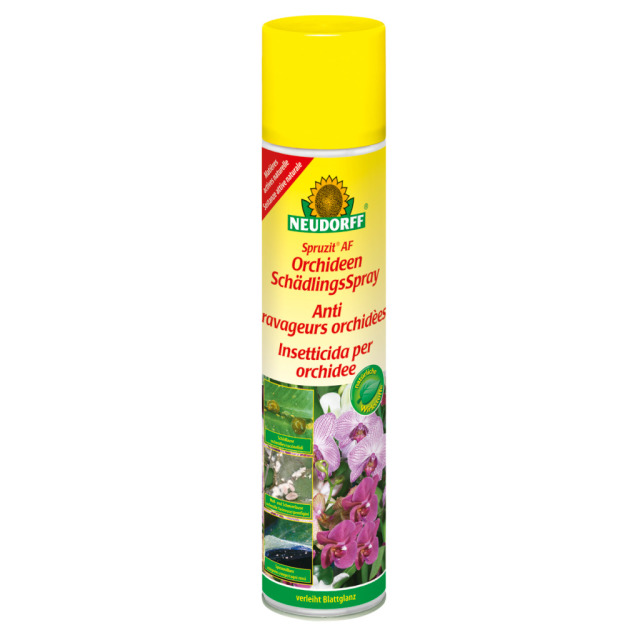 Spruzit Orchideen Schädlings Spray 300 ml