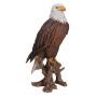 Amerikanischer Weisskopfseeadler 20.5x16x39.5cm