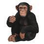 34.30Schimpanse sitzend